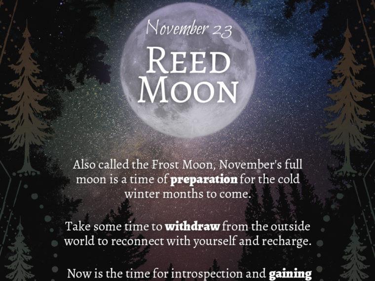 11 23 760x570 - 2018 Full Moons - November Reed Moon
