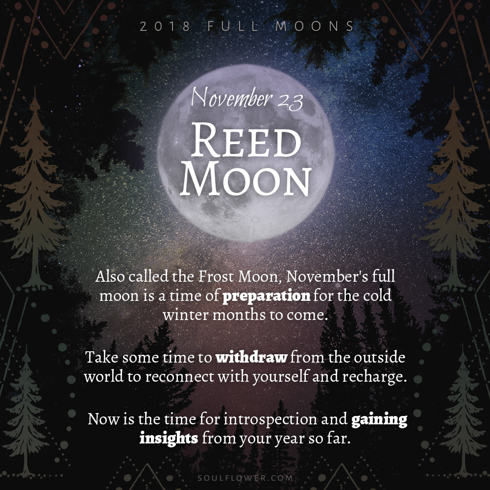 11 23 - 2018 Full Moons - November Reed Moon