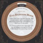2020 full moons 08 august 150x150 - 2020 Full Moon Calendar - Full Moon Advice