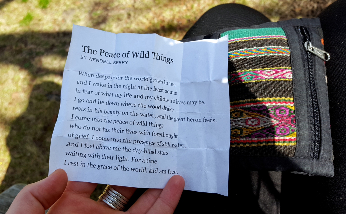 4 - The Peace of Wild Geese