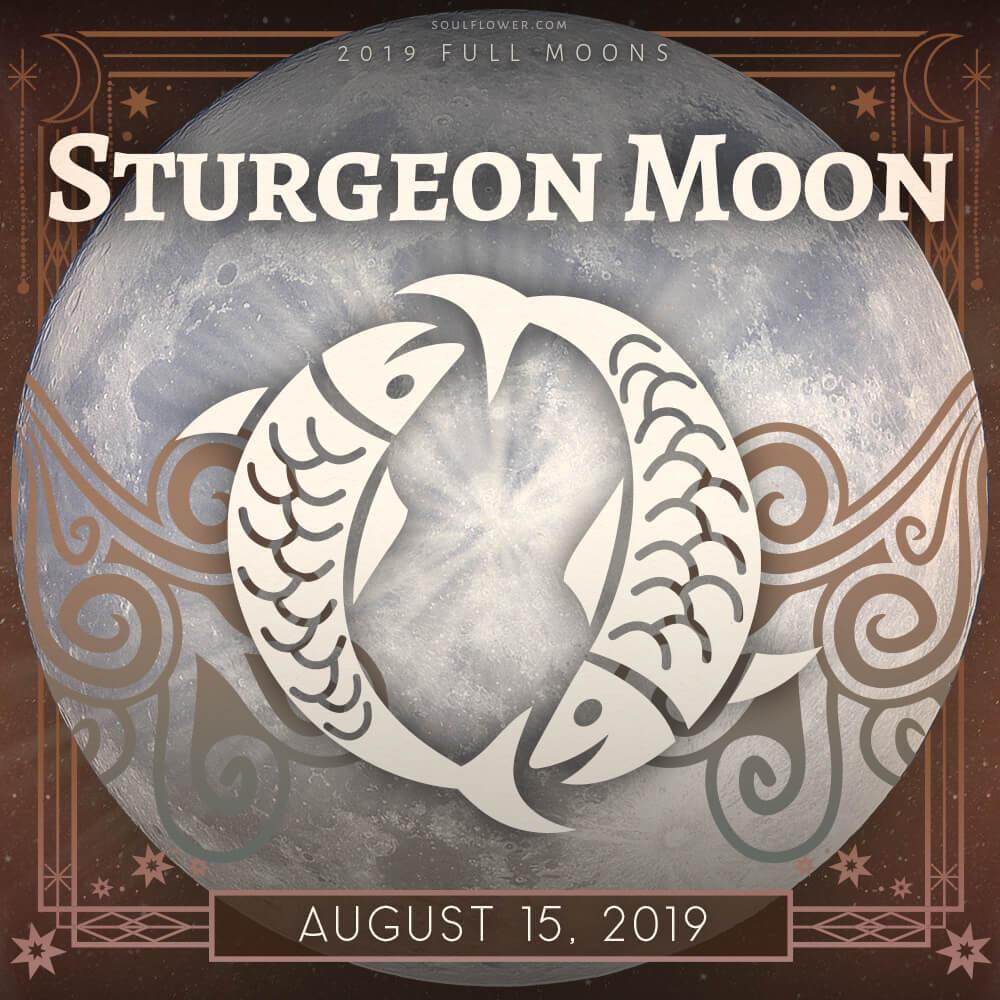 Aug 2019 full moon - 2019 Full Moon Calendar - Celebrate the Full Moon