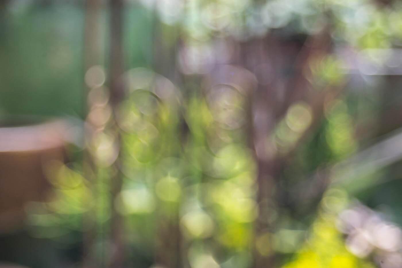 Behind the Scenes - Spirit of the Sun Lookbook - Soul Flower