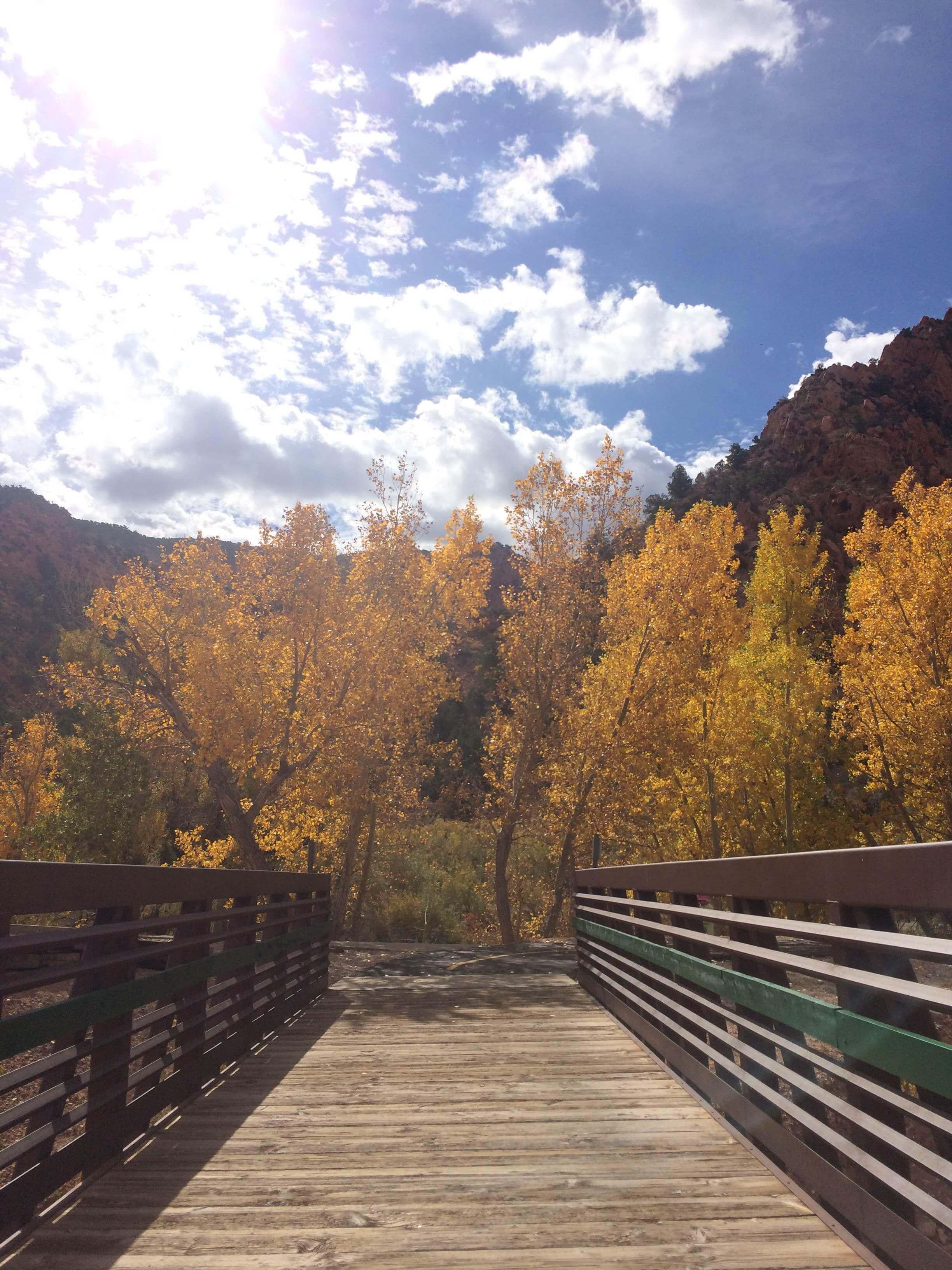 Autumn Bliss | Vibe Tribe | Soul Flower Blog