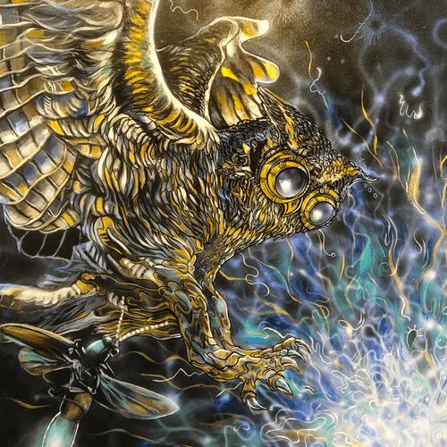 OWL scott west - Cloud Cult Tour Diary #1