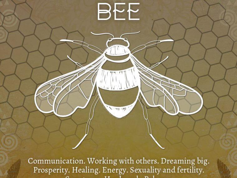 bee 760x570 - Bee Symbolism - Bee Spirit Animal