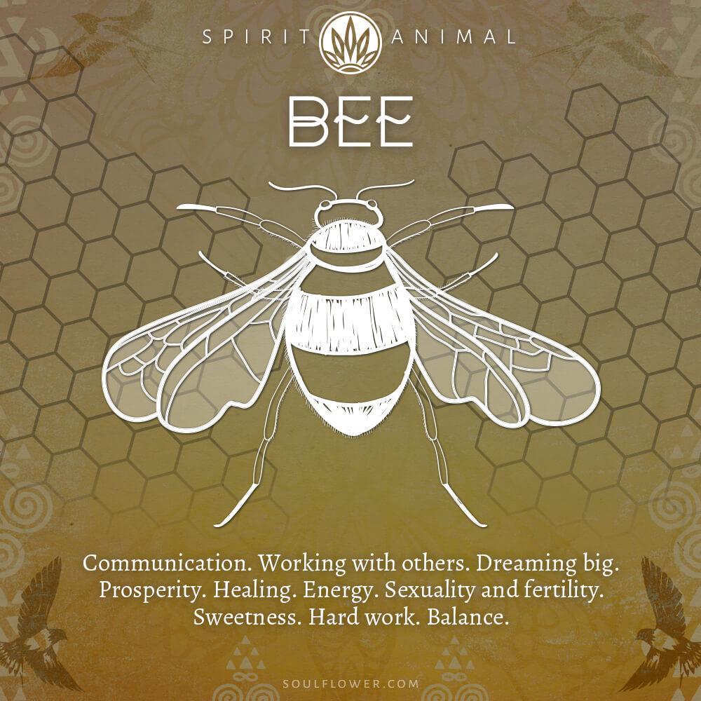 bee - Find Your Spirit Animal - Spirit Animal Meaning