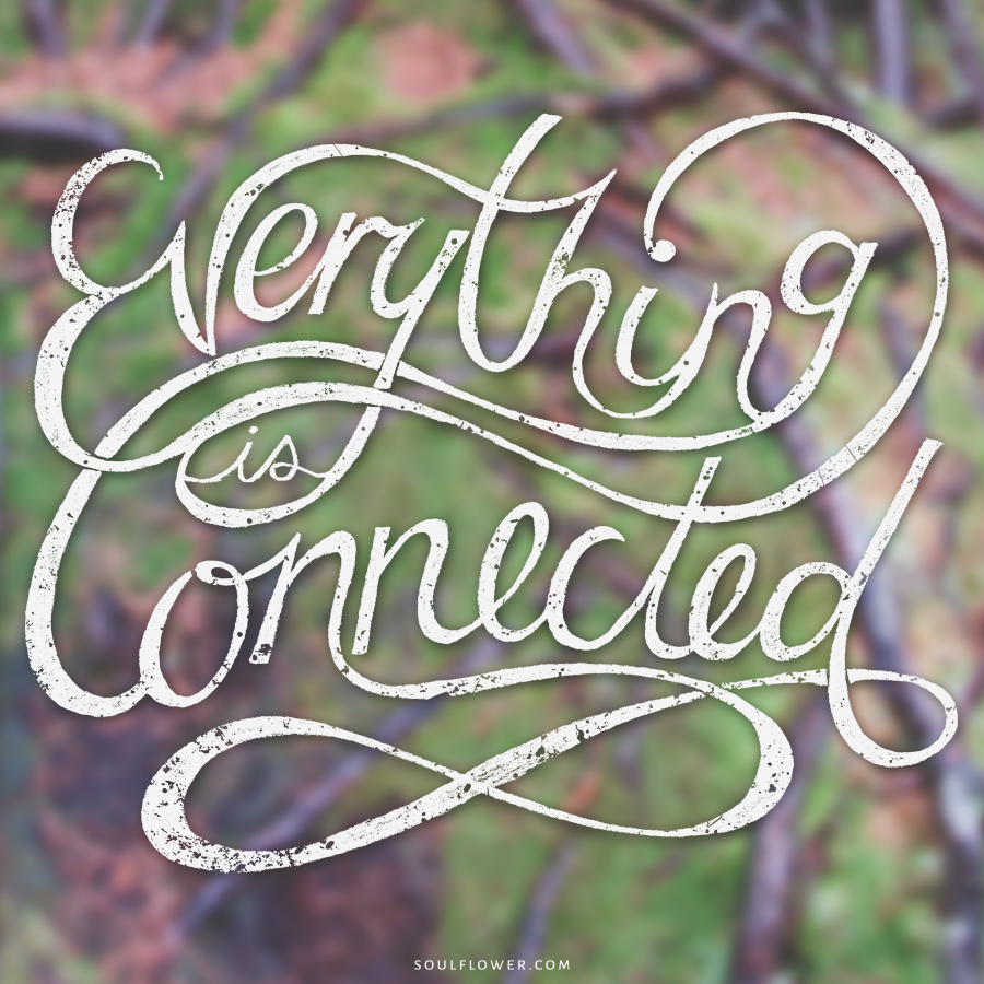 connected - Positive Quotes (Inspiration, Move Me Brightly!)