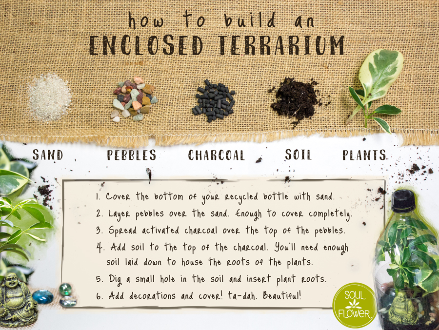diy plastic bottle terrarium instructions - Recycled Plastic Bottle Terrarium - Soda Bottle Terrarium - Soul Flower Blog
