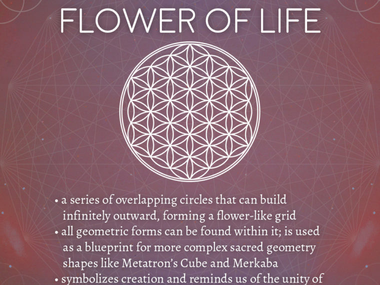 flower 760x570 - Flower of Life Meaning - Sacred Geometry