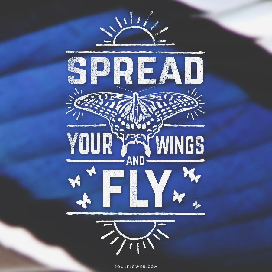 fly - Positive Quotes (Inspiration, Move Me Brightly!)