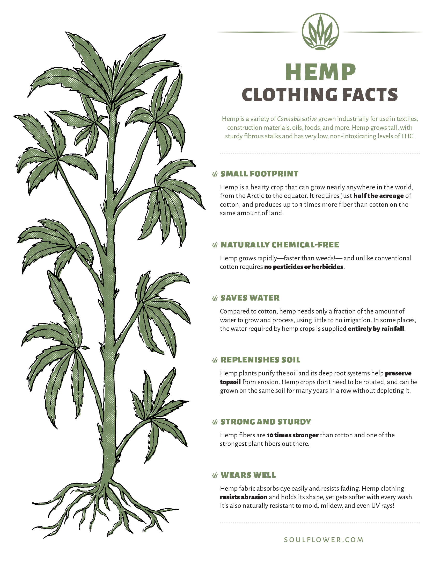Benefits of Hemp Clothing: Just the Facts!