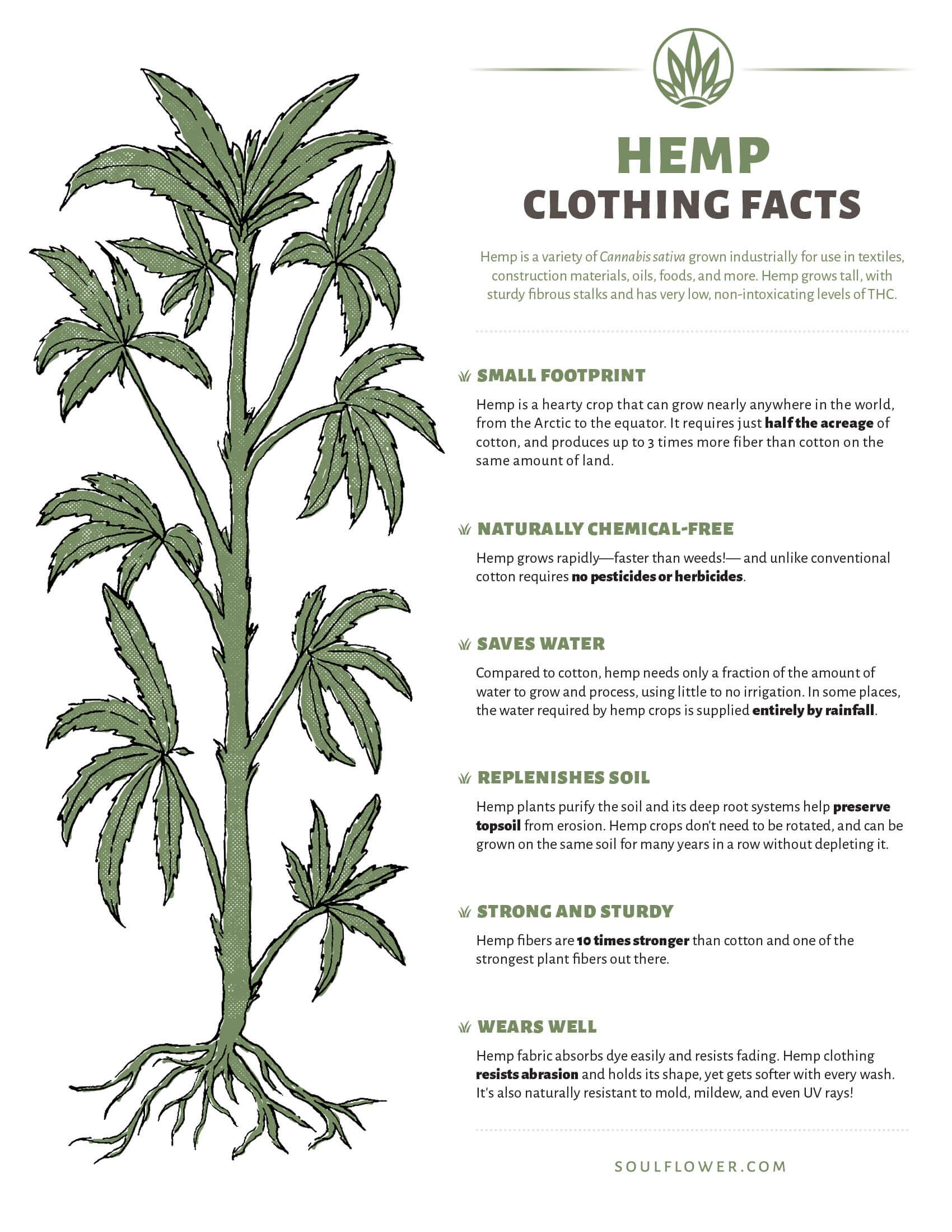 hemp clothing benefits graphic - Hemp Clothing Benefits - A Sustainable Choice!