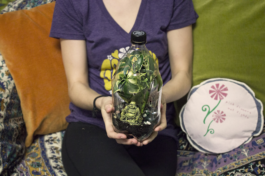 Recycled Plastic Bottle Terrarium 2 Liter Bottle Terrarium