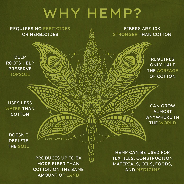 why hemp - Hemp Clothing Benefits - A Sustainable Choice!