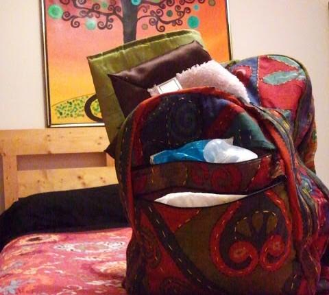 wine backpack 480x430 - Dandelion Wine Backpack