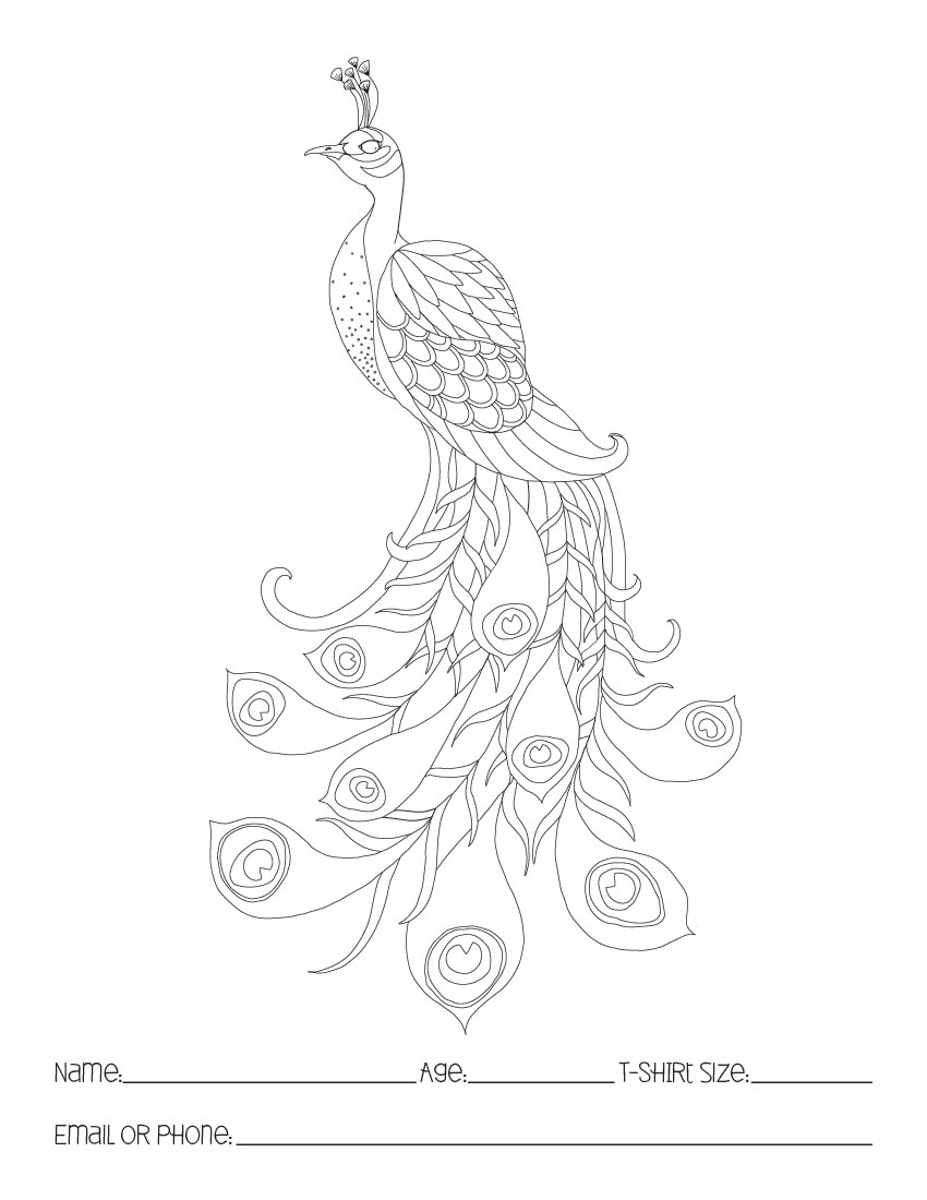 peacock coloring pages for kids laura williams